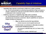 capability gaps initiatives