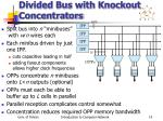 divided bus with knockout concentrators