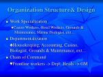 organization structure design