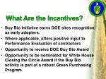 what are the incentives