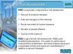 rsei and risk assessment