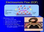 electroosmotic flow eof