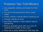 protection tips field workers