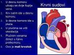 krvni sudovi