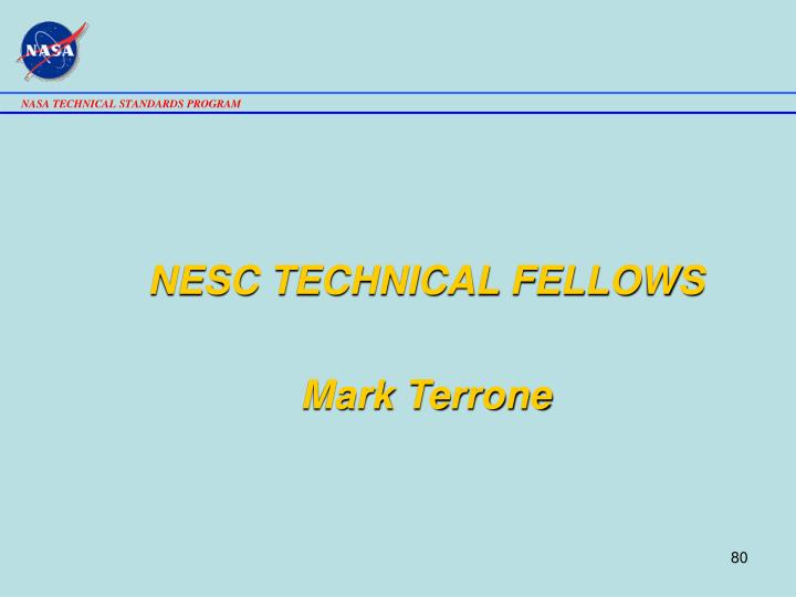 NESC TECHNICAL FELLOWS