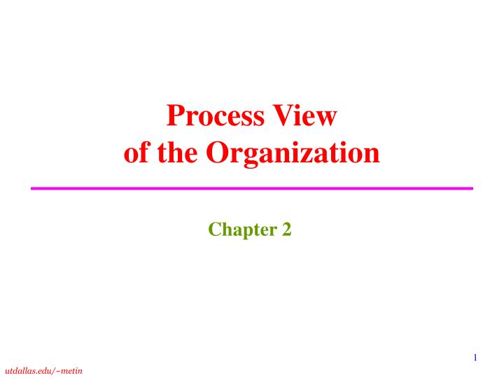 process view of the organization n.