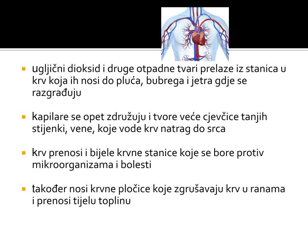 PPT - Ljudsko tijelo PowerPoint Presentation - ID:4534096