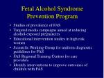 fetal alcohol syndrome prevention program