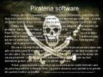pirateria software