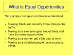 what is equal opportunities