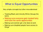 what is equal opportunities1