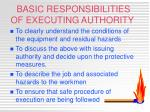 basic responsibilities of executing authority