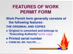 features of work permit form