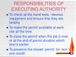 responsibilities of executing authority