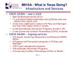 mh sa what is texas doing infrastructure and services