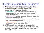 distance vector dv algorithm