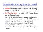 internet multicasting routing dvmrp