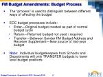 fm budget amendments budget process