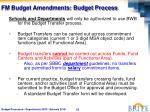 fm budget amendments budget process1