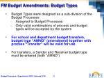 fm budget amendments budget types