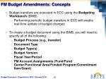 fm budget amendments concepts