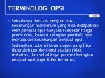 terminologi opsi3
