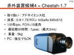 4 cheetah 1 7
