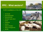 ppc what sectors