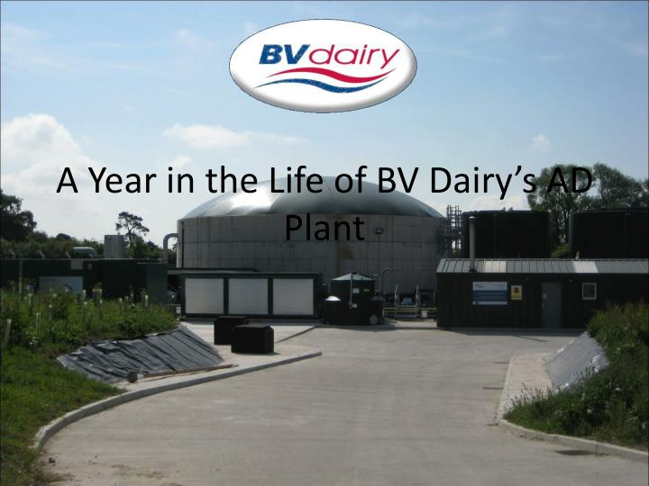 a year in the life of bv dairy s ad plant n.