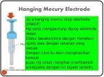 hanging mecury electrode