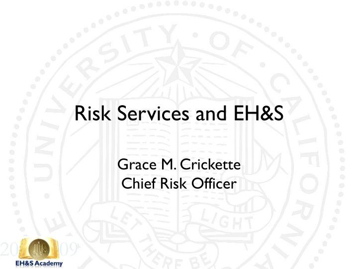 risk services and eh s n.
