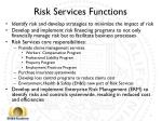 risk services functions