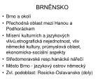 brn nsko