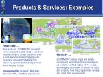 products services examples