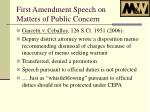 first amendment speech on matters of public concern