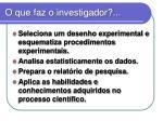 o que faz o investigador1