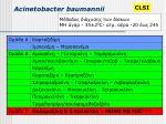 acinetobacter baumannii1