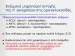 p aeruginosa11