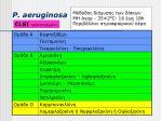 p aeruginosa9