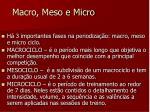 macro meso e micro