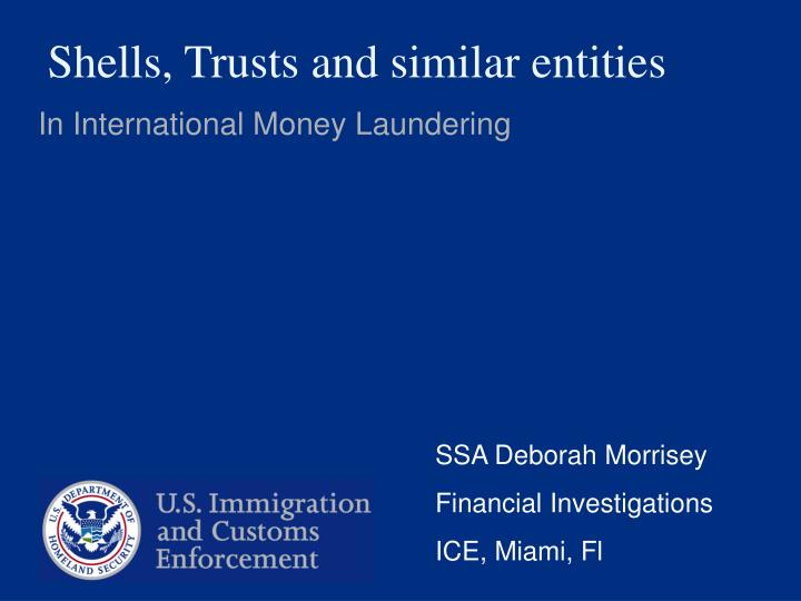 shells trusts and similar entities n.