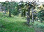 lesy ochrann pod stromovou hranic