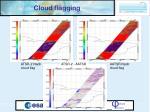 cloud flagging