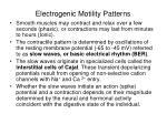 electrogenic motility patterns
