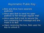 asymmetric public key