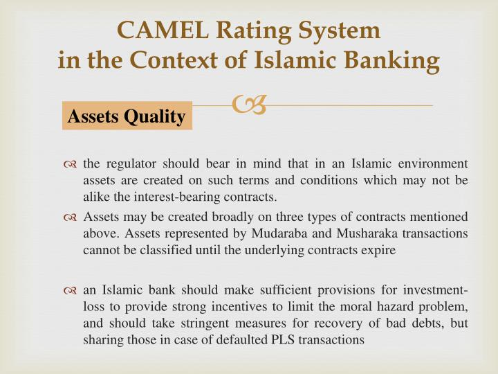 camel rating