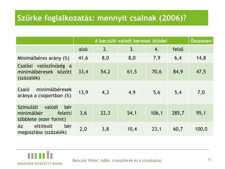 Szürke foglalkozatás: mennyit csalnak (2006)?