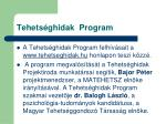 tehets ghidak program1