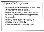 3 types of self regulation