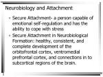neurobiology and attachment